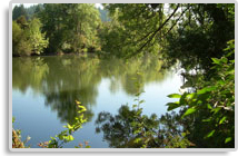 Angelo planning group environmental and open space for Tualatin river fishing